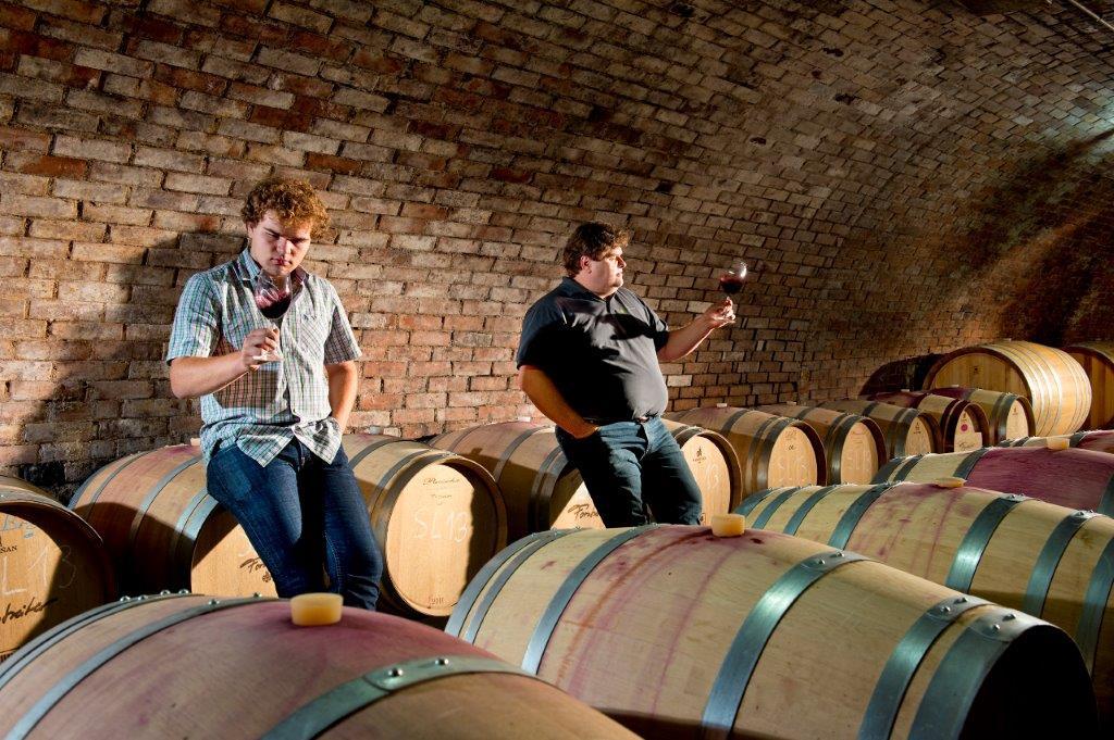 Weingut Forstreiter Keller mit Meinhard Forstreiter und Sohn bei Barriquefässer