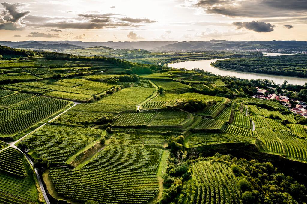 Luftbild Riede Kremser Kogl